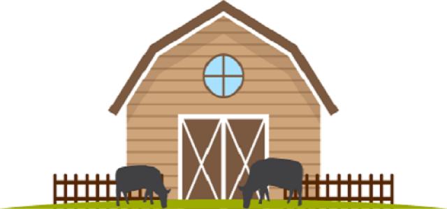 Όγκος, αξία, μελλοντικές προοπτικές στην αγορά των χοίρων των ΗΠΑ έως το 2026